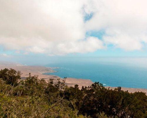 Fray Jorge National Park @Sernatur